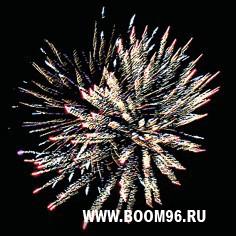 В День рождения! (модуль) за 1450 руб в Москве (На день